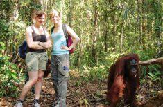 Orangutan_Tour_dsc_0127