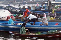 oangutan tour-floating-market-2