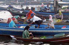 oangutan tour-floating-market-2
