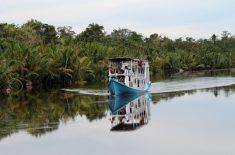 orangutan-tour-img-14